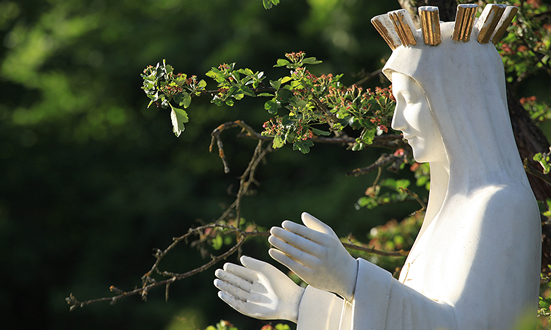 À Beauraing, la Vierge au cœur d'or convertit les pécheurs