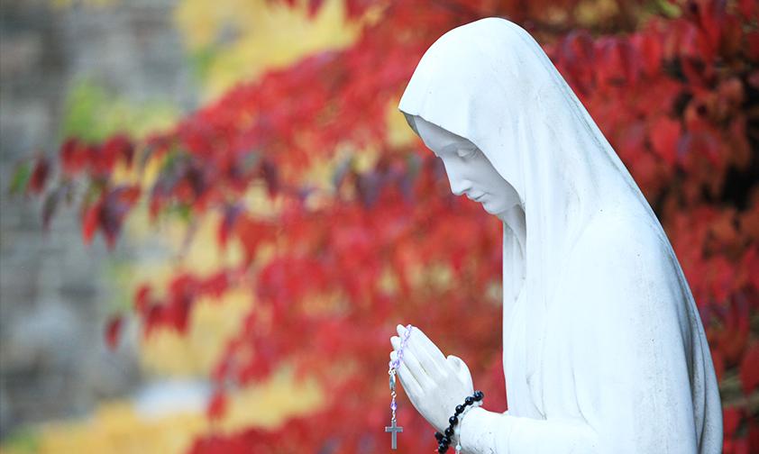 À Banneux, la « Vierge des Pauvres » soulage les souffrances